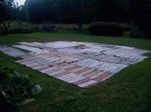 mattor i trädgård.jpg
