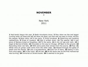 HS fläcktext november.jpg