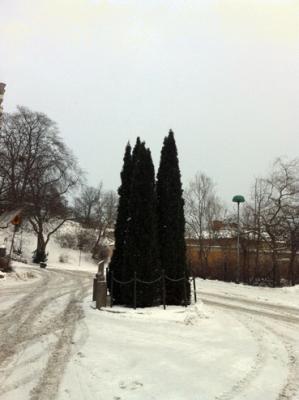 HS dödensö vinter.jpg