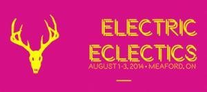 HS ElectricEclectics.jpg