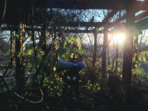 hs hagalund megafon med sol.jpg