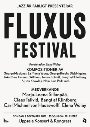 hs fluxus 2018.jpg